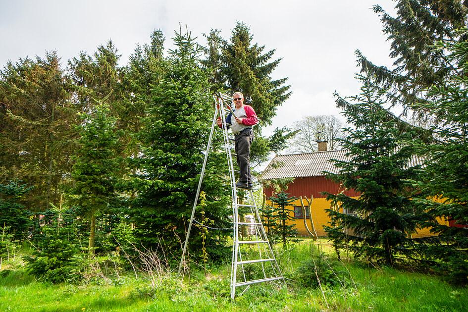 Jens Aages Park- og Haveservice 18