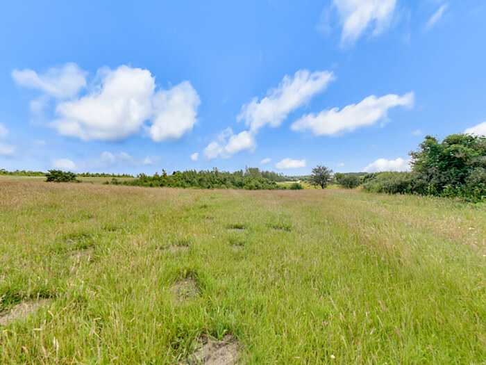 Panorama nummer 5